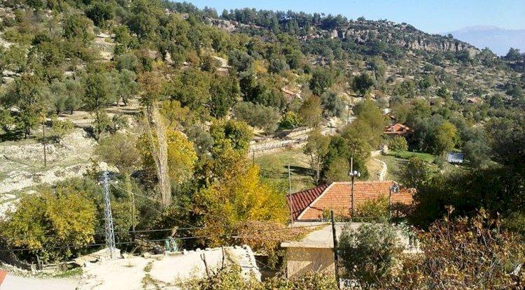 Akörü Köyü Resimleri - Akörü Köyü Fotoğrafları - 14