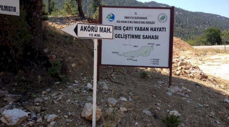 Akörü Köyü Resimleri - Akörü Köyü Fotoğrafları - 1