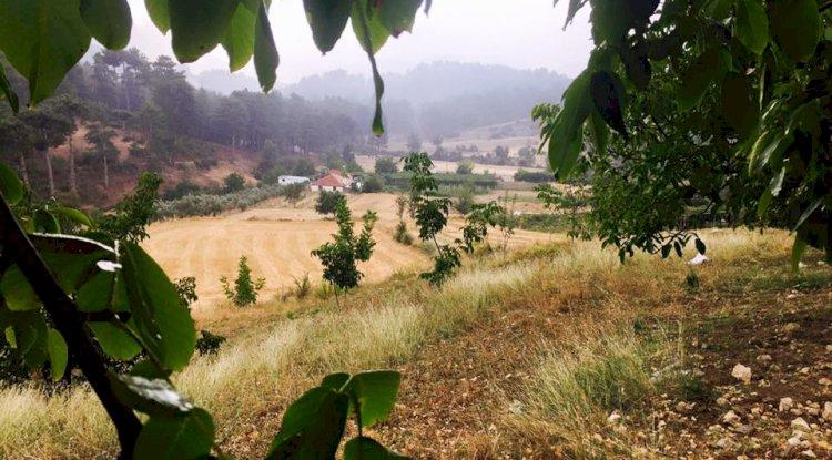 Kaş Çamlıköy Fotoğrafları 3