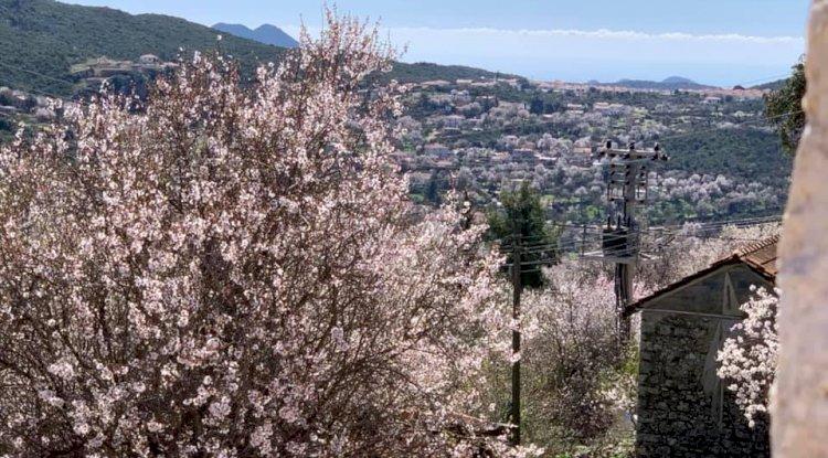 Kaş Çukurbağ Köyü Fotoğrafları 2