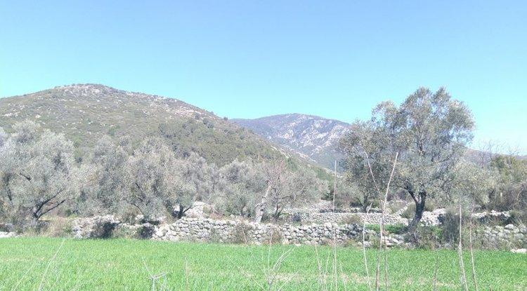 Kaş Gökçeyazı Köyü Fotoğrafları - Gökçeyazı 3