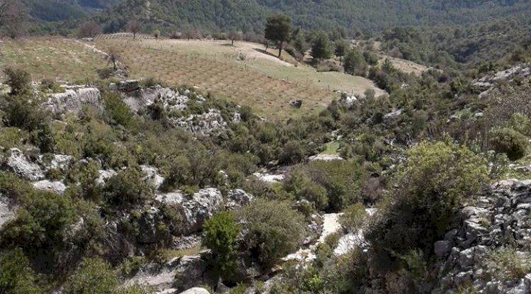 Kaş Gürsu Köyü Fotoğrafları -Kaş Gürsu Mahallesi Fotoğrafları 1