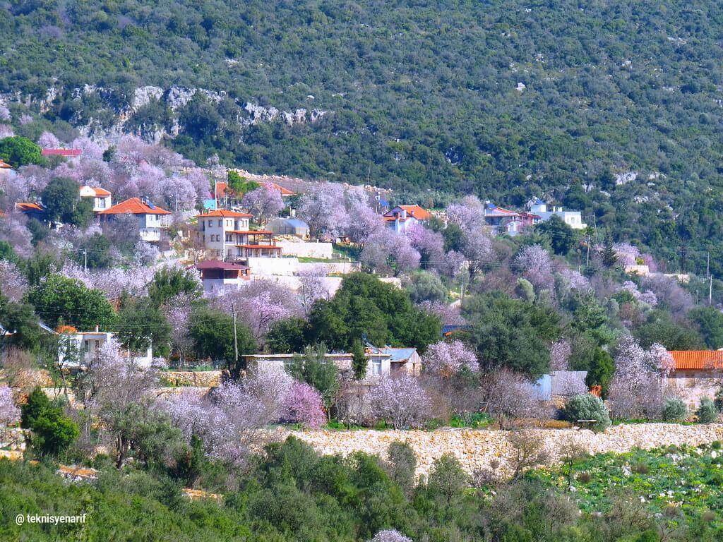 Kaş Pınarbaşı Köyü Fotoğrafları -Kaş Pınarbaşı Mahallesi Fotoğrafları 3