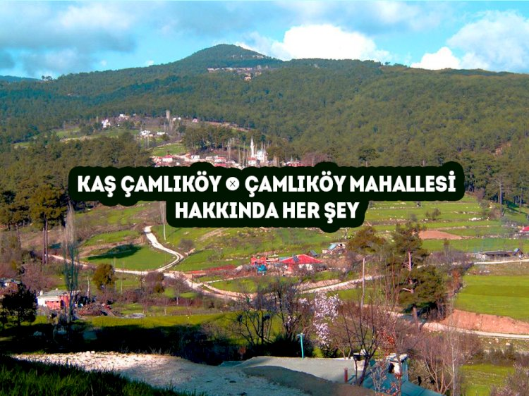 Kaş Çamlıköy Mahallesi -  Çamlıköy Köyü Hakkında Her şey