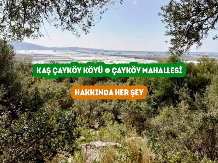 Kaş Çayköy Mahallesi -  Çayköy Köyü Hakkında Her şey