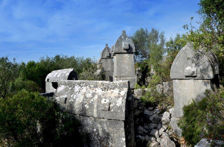 Kaş Gökçeyazı Mahallesi - Gökçeyazı Köyü Hakkında Her şey