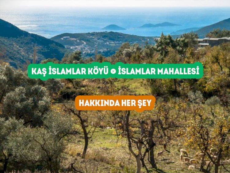 Kaş İslamlar Mahallesi - İslamlar Köyü Hakkında Her şey